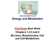 Energy and Metabolism spring 2018