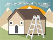 How to Clean Mold from a Roof