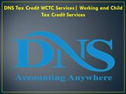 DNS Tax Credit WCTC Services Working and Child Tax Credit Services