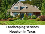 Landscaping services Houston in Texas