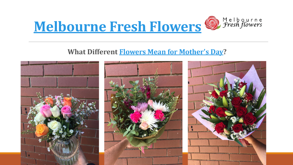 What Different Flowers Mean For Mothers Day Melbourne Fresh Flo