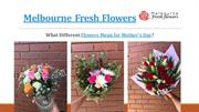 What Different Flowers Mean for Mother's Day – Melbourne Fresh Flowers