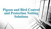 Pigeon and Bird Control and Protection Netting Solutions