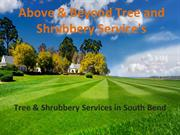 All Types Of Tree Removal & Services Companies South Bend