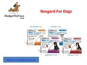 Nexgard Chewable for Dogs – BudgetVetCare