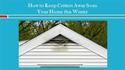 How to Keep Critters Away from Your Home this Winter