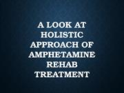 A Look At Holistic Approach Of Amphetamine Rehab Treatment (pdf.io)