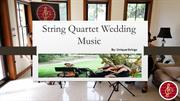 Make Your Wedding More Special With String Quartet Wedding Music