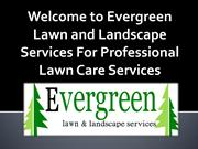 Evergreen Lawn and Landscape Services For Professional Lawn