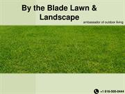 By The Blade Lawn - Outdoor Design Studio Kansas City