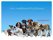 Air Conditioned Dog Houses. Do You Really Need It? Explore!