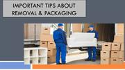Important Tips Packer and Movers Company