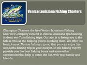 Venice Louisiana Fishing Charters