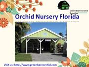Best orchid nursery Florida | Green Barn Orchid Supplies