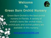 Best orchid nursery in Florida | Green Barn Orchid Supplies