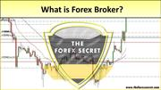 TFS What is Forex Broker