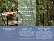 Fisheries Management & Pond Stocking-pond lake local services buffalo