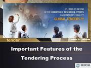 Important Features of the Tendering Process - BidDetail