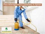 Pest Management Company in Ajmer