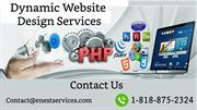 Dynamic Website Design Services | Website Designing