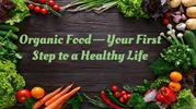 Organic Food—Your First Step to a Healthy Life