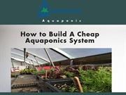 How to build a cheap Aquaponic System