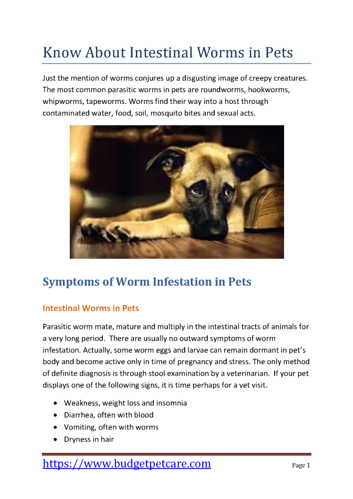 Know about Intestinal Worms in Pets |authorSTREAM