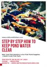 Step by Step How to keep pond water clear