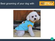 Best Online Store for All Types of Dog Grooming Supplies