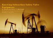 Knowing Subsurface Safety Valve- API14A