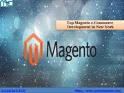 Magento Marketplace in Florida.