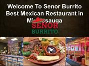 Welcome To Senor Burrito-Best Mexican Restaurant in Mississauga