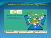 What is Bulk voice all and its key features
