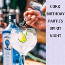 Cork birthday parties -soho ireland