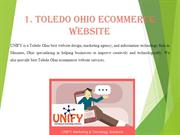 Toledo Ohio eCommerce website