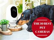 Reviews 2018 | Best Pet Camera