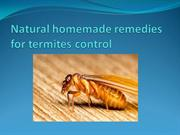Natural homemade remedies for termites control