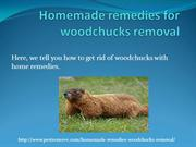Home made remedies for woodchucks removal