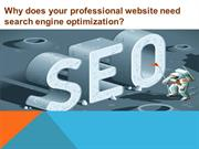 Why does your professional website need search engine optimization
