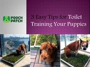 Best Tips for Toilet Training Your Puppies