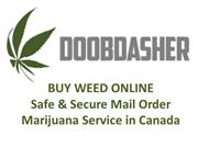 Buy cannabis online from doobdasher in Canada