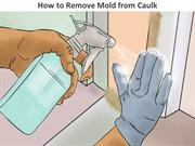 How to Remove Mold from Caulk