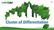 Cluster of Differentiation