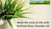 Make the most of Life with Artificial Grass Chandler AZ