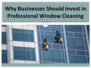 Why Businesses Should Invest in Professional Window Cleaning