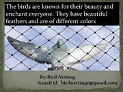 Bird control netting is an effective method to get rid of these nests
