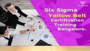 Six Sigma Yellow Belt Certification Training