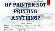HP Printer Not Printing Anything