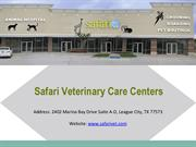 Pet Grooming Give Your Pet A Stylish Look From Safari Vet Grooming Sty