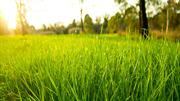 Increasing Lawnmower Life Span with Some Easy To Follow Tips